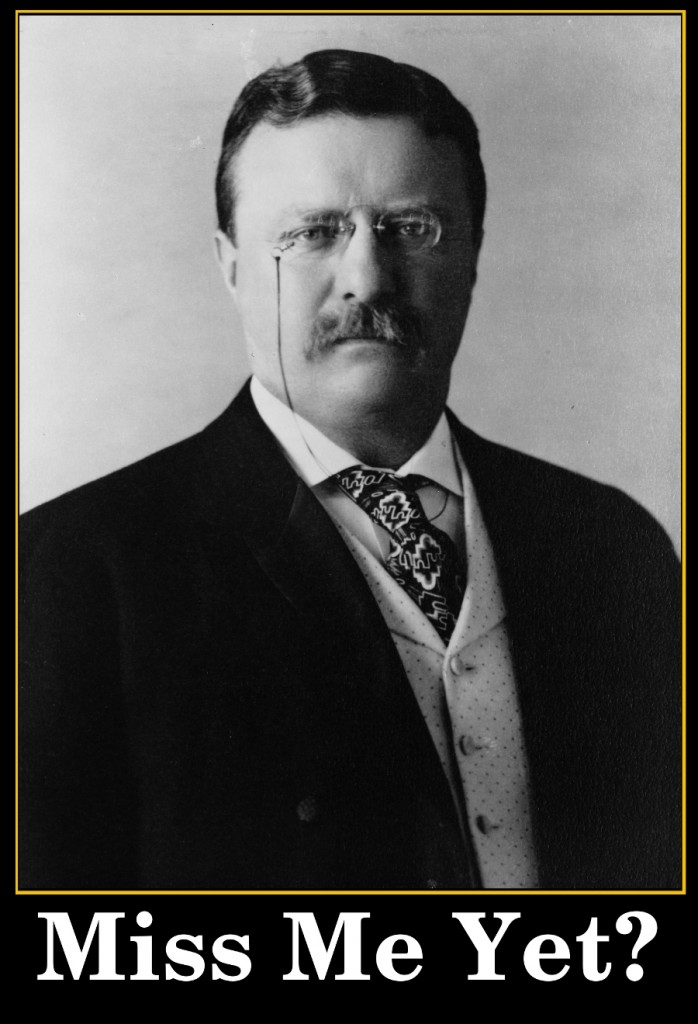 comic-2012-03-13-Miss Me Yet - President Theodore Roosevelt photo from 1904.jpg