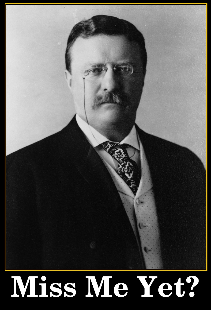 Miss Me Yet   President Theodore Roosevelt Photo From 1904